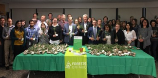 forests pcsl